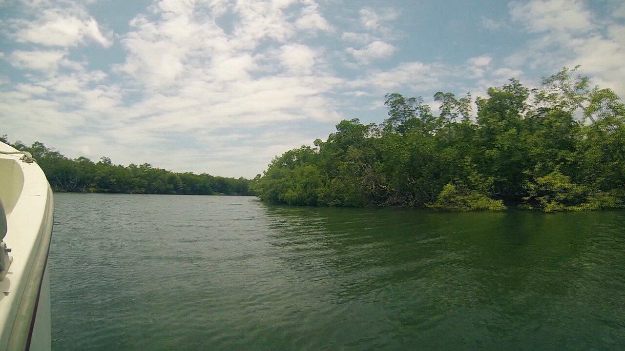 Reentrâncias maranhenses são destaque no Maranhão Natureza