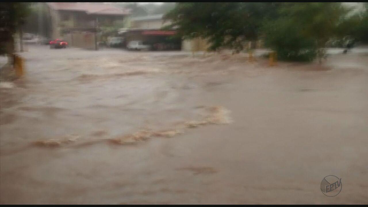 Chuva faz córrego transbordar e alaga 8 casas em Pirassununga, SP