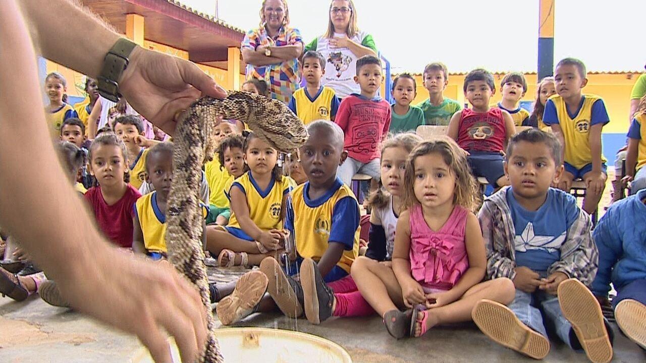 Projeto ensina crianças sobre animais peçonhentos