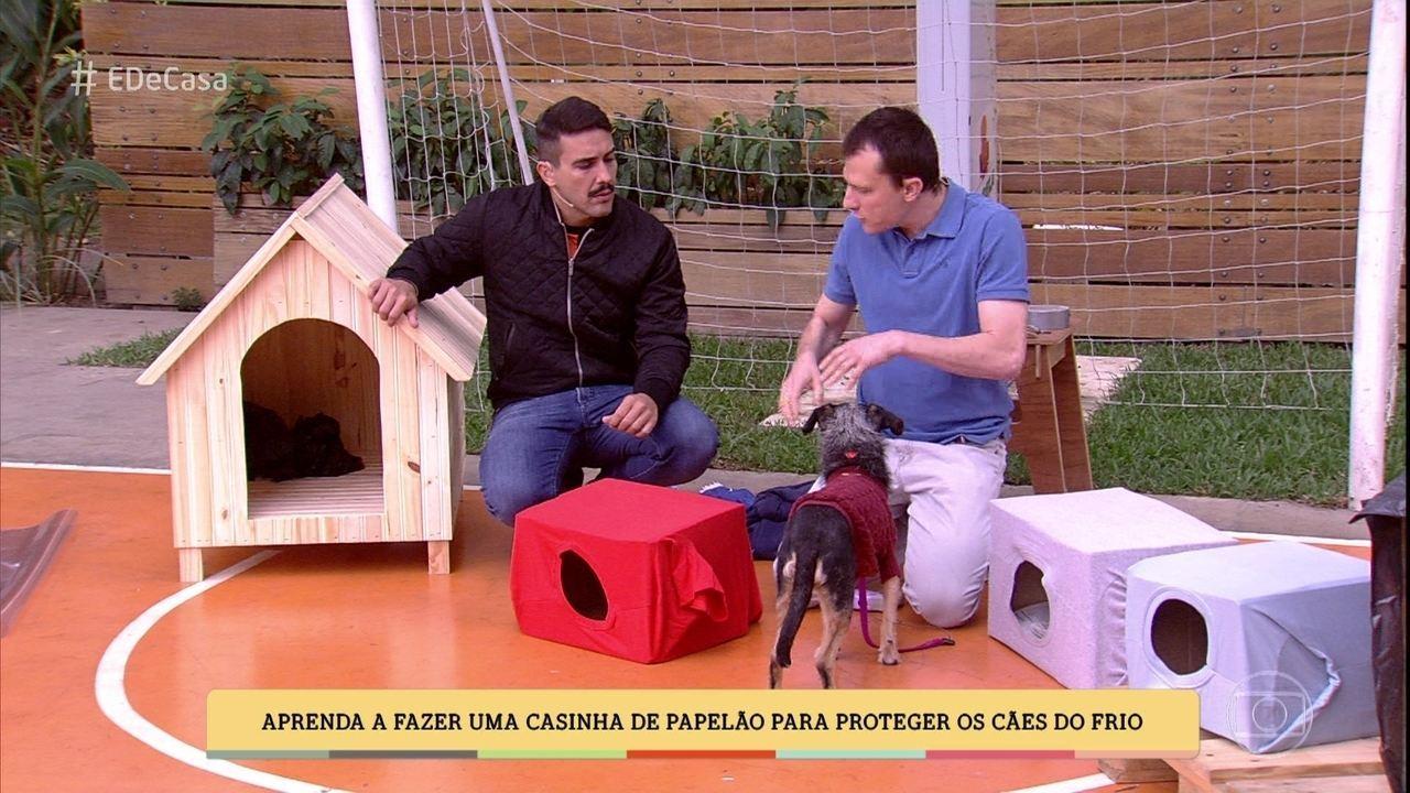Alexandre Rossi dá dicas para proteger os cães do frio