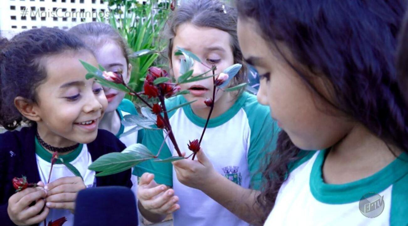 Escola de Santa Barbara D'Oeste recebe reconhecimento internacional