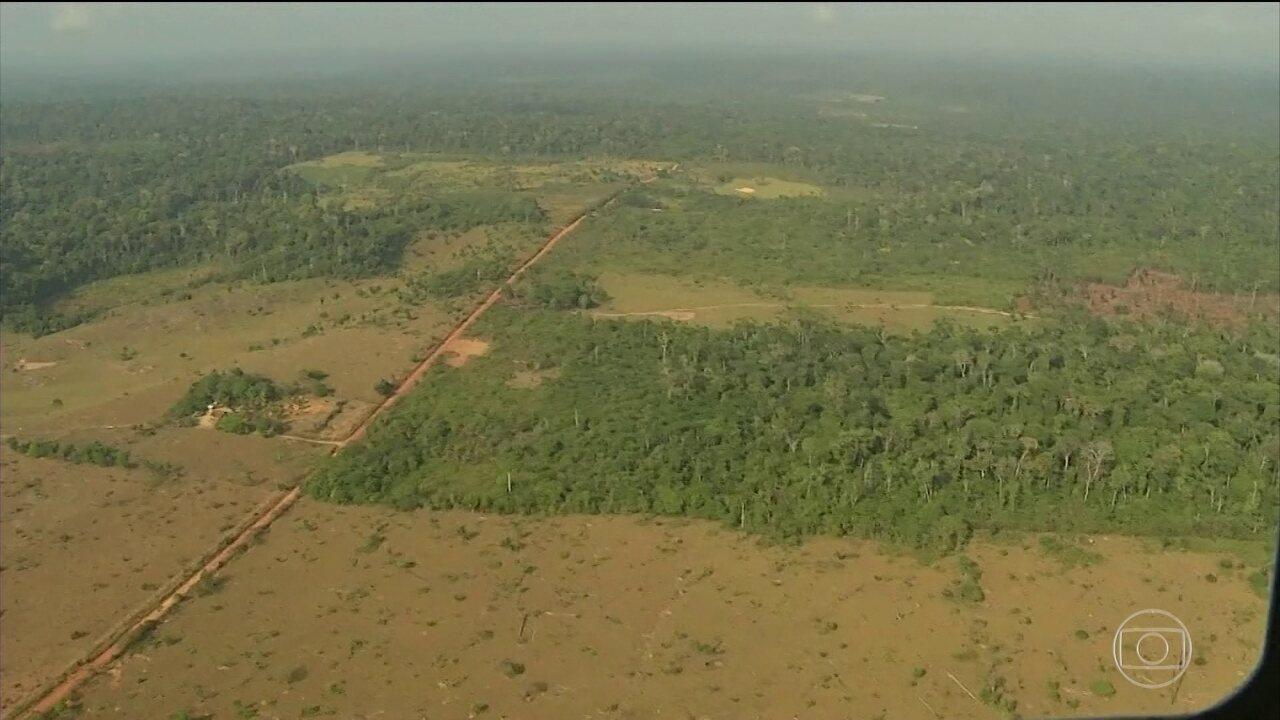 Temer sanciona MP que altera limites de área de conservação ambiental no Pará