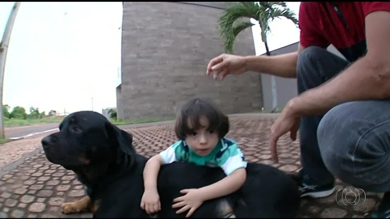 Convivência com cachorros serve de terapia para crianças com autismo