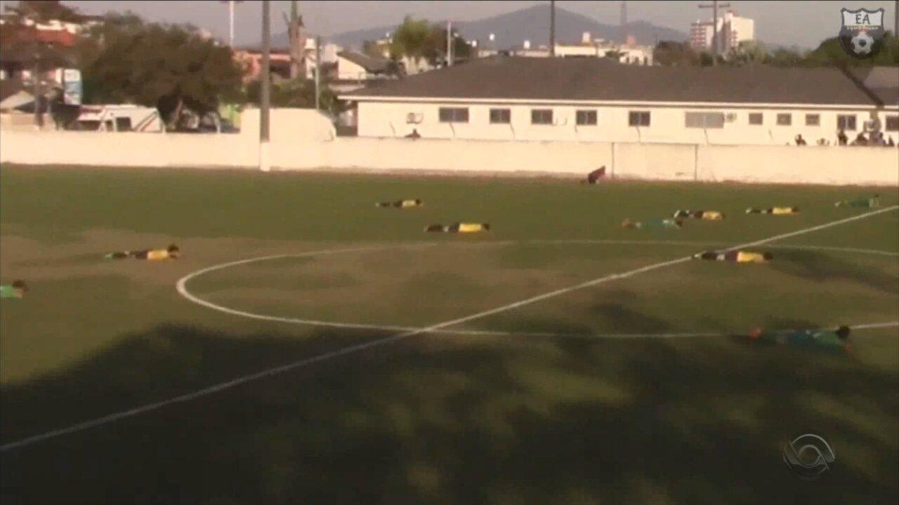 Enxame de abelha invade campo e jogadores deitam no chão para se proteger em Palhoça