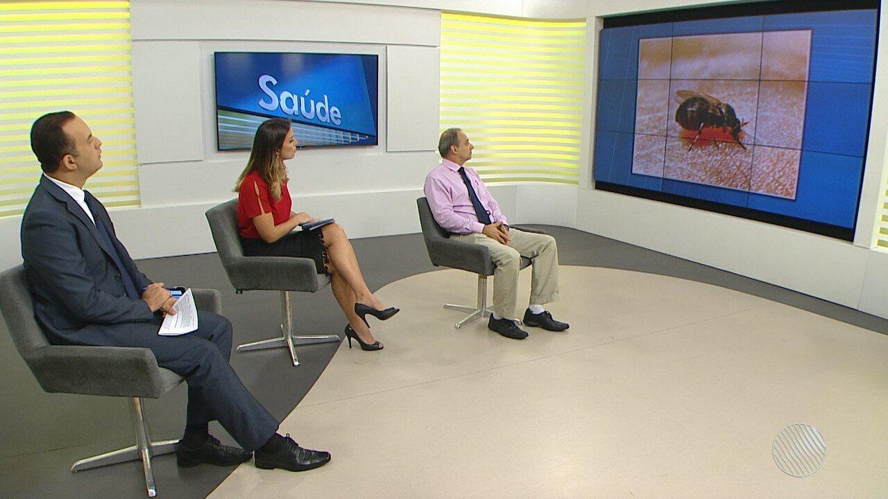 Febre oropouche, causada pelo mosquito maruim, é registrada em Salvador e região