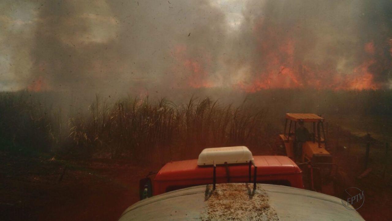 Incêndio destrói área de preservação ambiental em Santa Gertrudes