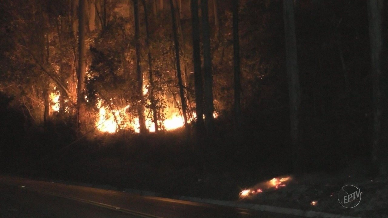 Incêndio na Serra de Campestrinho queima cerca de 30 mil m² de mata em Poços de Caldas