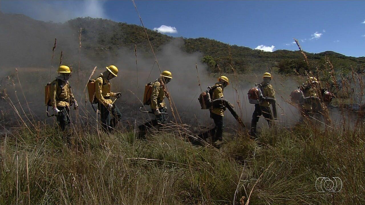 Comunidade quilombola reduz número de queimadas, em Goiás