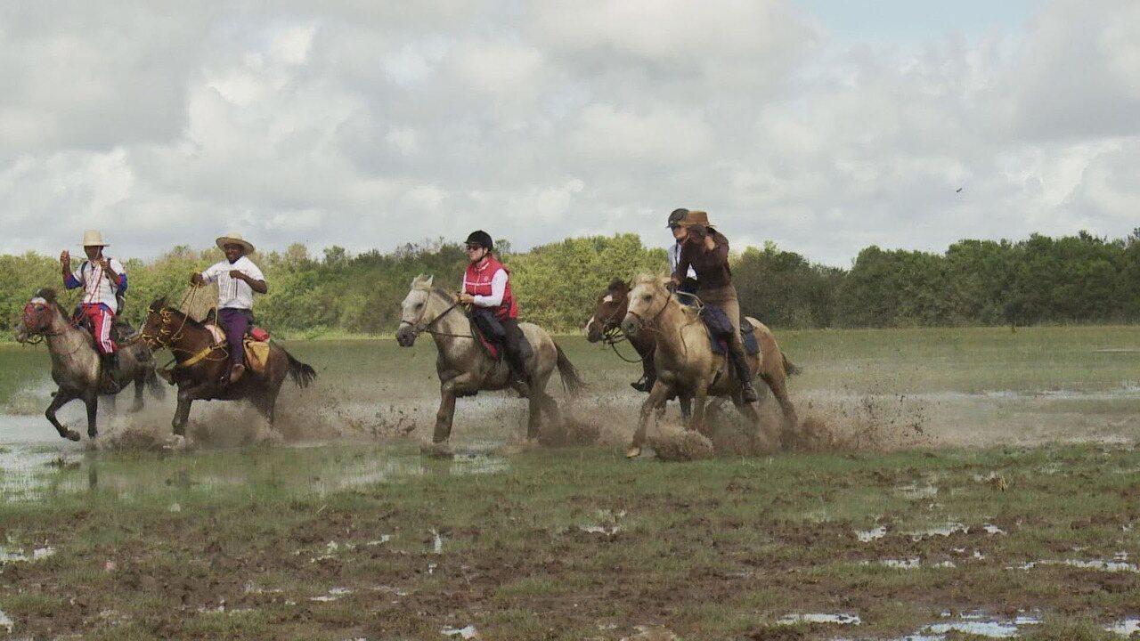 Cavalgada na Ilha de Marajó