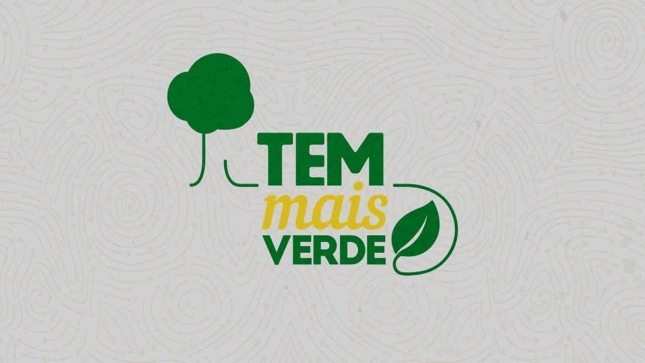 Tem Mais Verde é realizado em Votuporanga no dia 17 de setembro