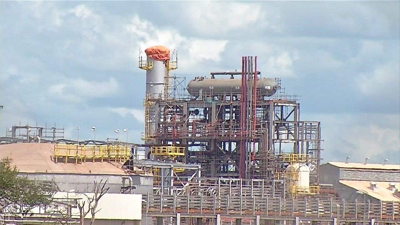 Resultado de imagem para Petrobras  fábricas de fertilizantes no Nordeste