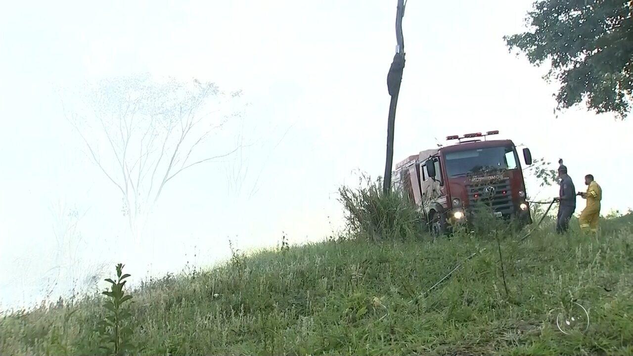 Incêndio em área florestal mobiliza bombeiros de Araçatuba