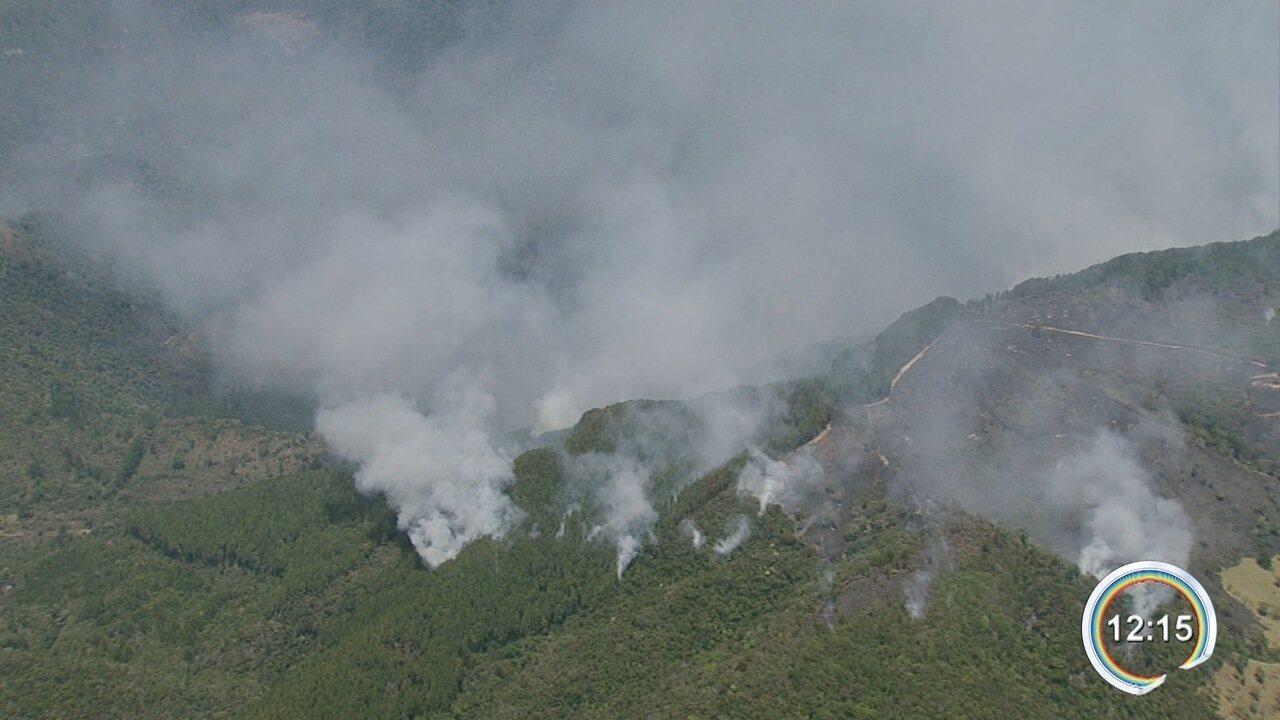 Área de 300 hectares de Campos do Jordão é consumida por incêndio