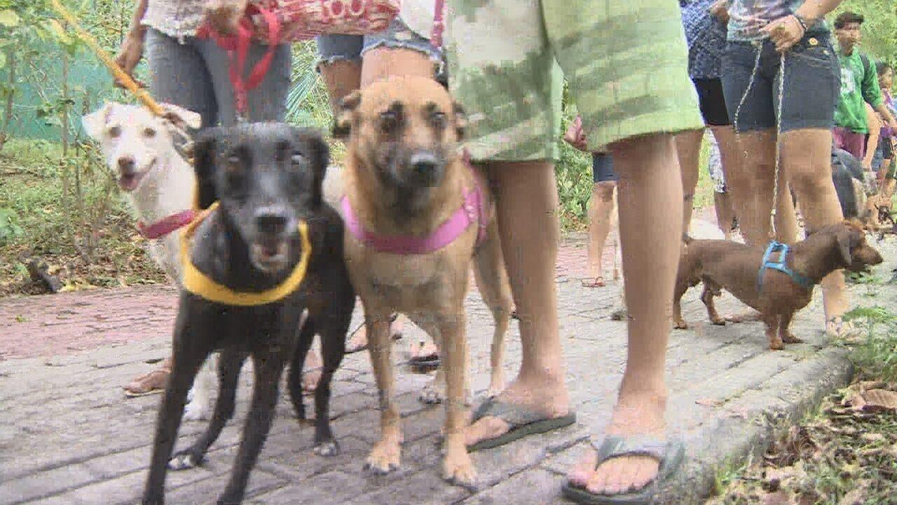 3º 'Amicão' reúne cerca de 10 mil pessoas em Manaus