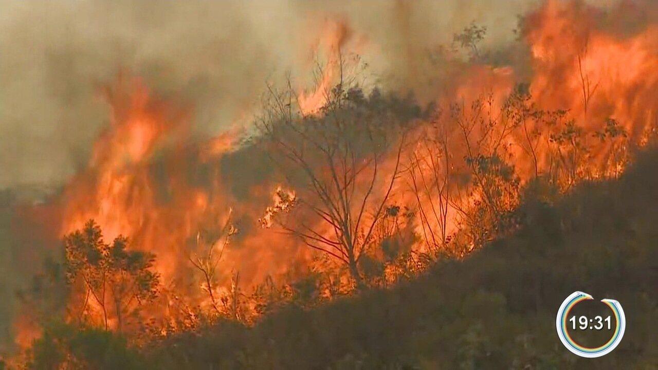 Região sofre com incêndios em áreas verdes