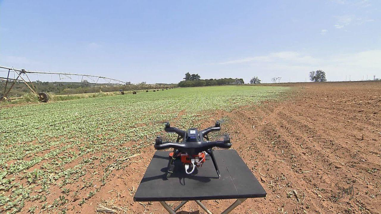 Tecnologia com drone deve ajudar pequenos produtores a controlar e melhorar plantações
