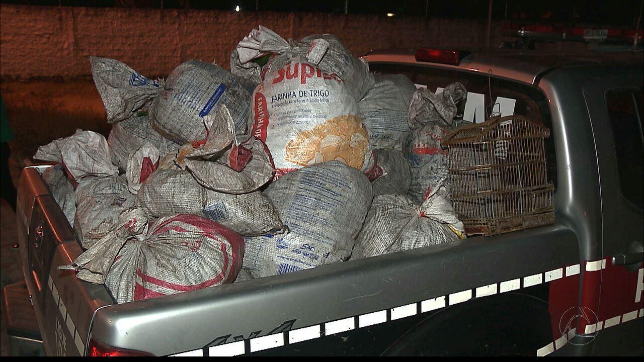 Polícia apreende 2 mil caranguejos capturados de forma irregular em Cabedelo