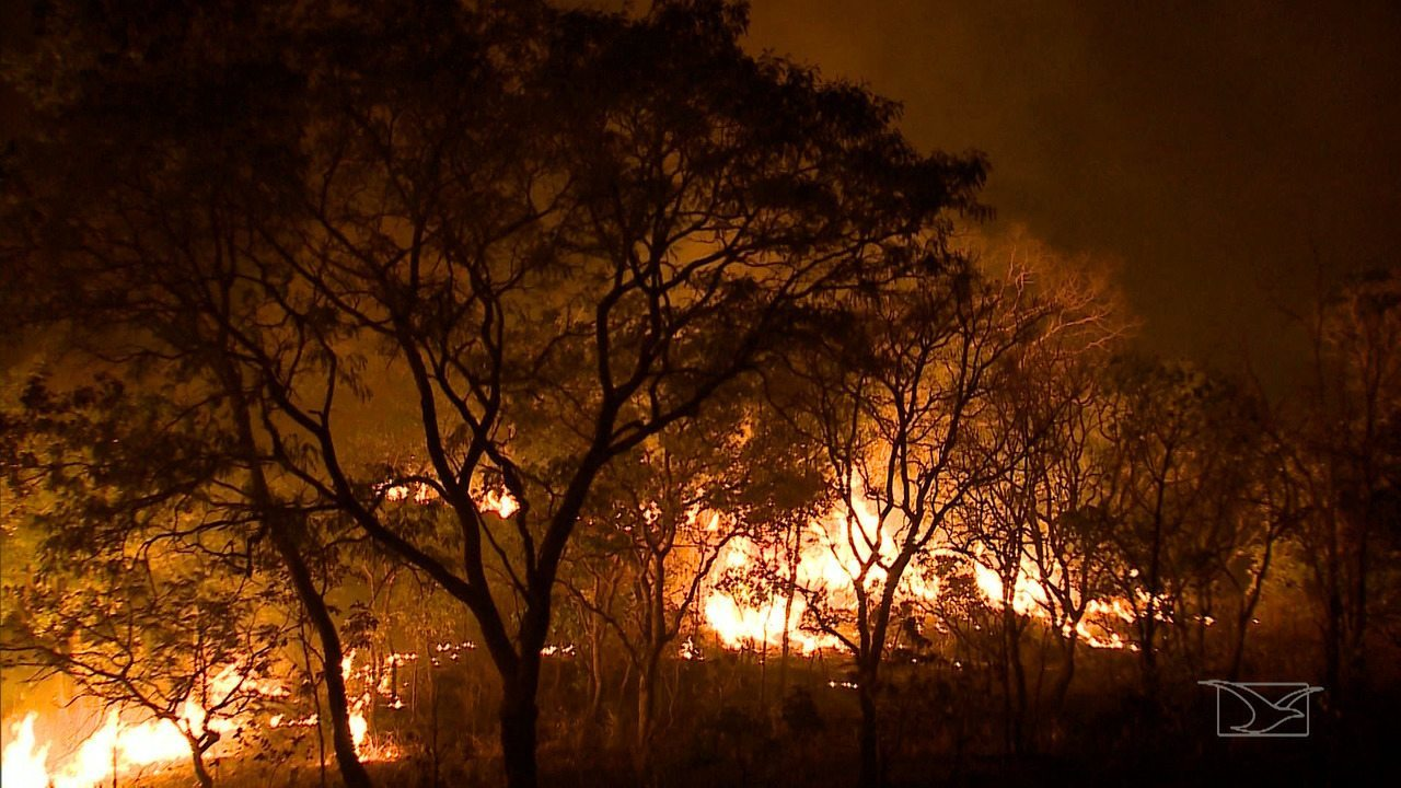 Repórter Mirante mostra métodos para conter queimadas no Maranhão