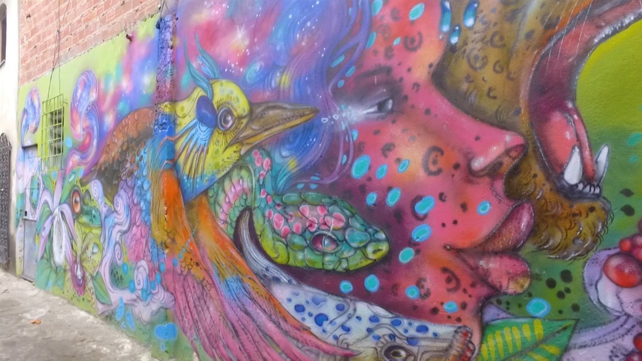 'Vumbora' é guiado pelo artista visual Eder Muniz em Castelo Branco