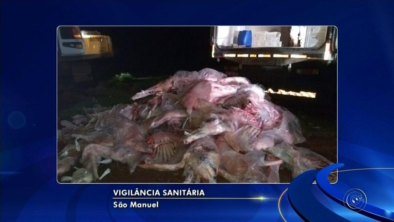 Quatro toneladas de carne irregular são apreendidas em São Manuel