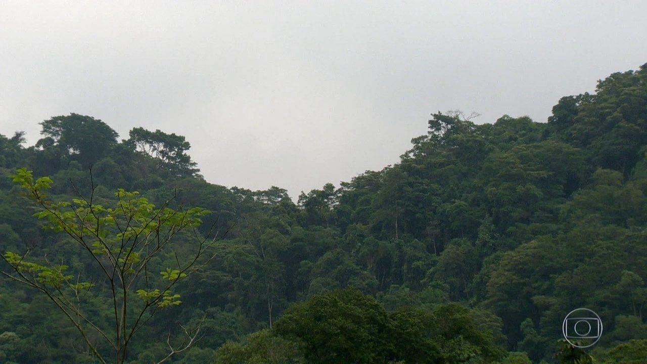 Vacinação contra febre amarela vai ser intensificada em Nova Iguaçu