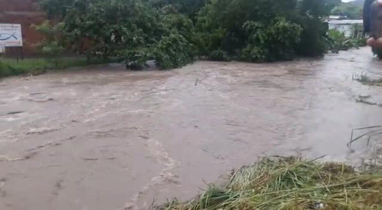 Vaca é levada por correnteza durante chuva forte em Piraí, RJ