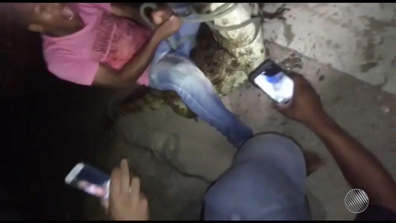Jacarés que vivem na Lagoa Grande, em Feira de Santana, são alvo de maus tratos