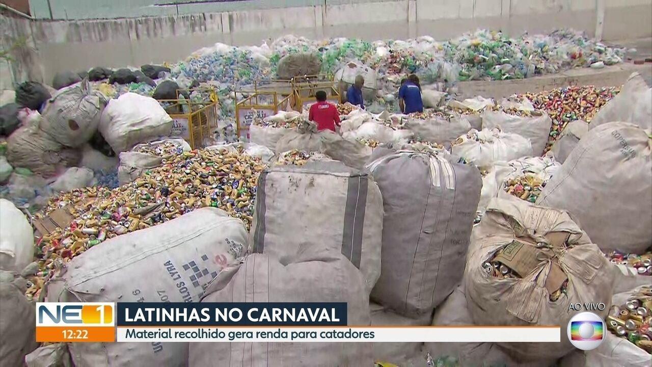 Catadores recolhem mais de 30 toneladas de produtos recicláveis em Olinda