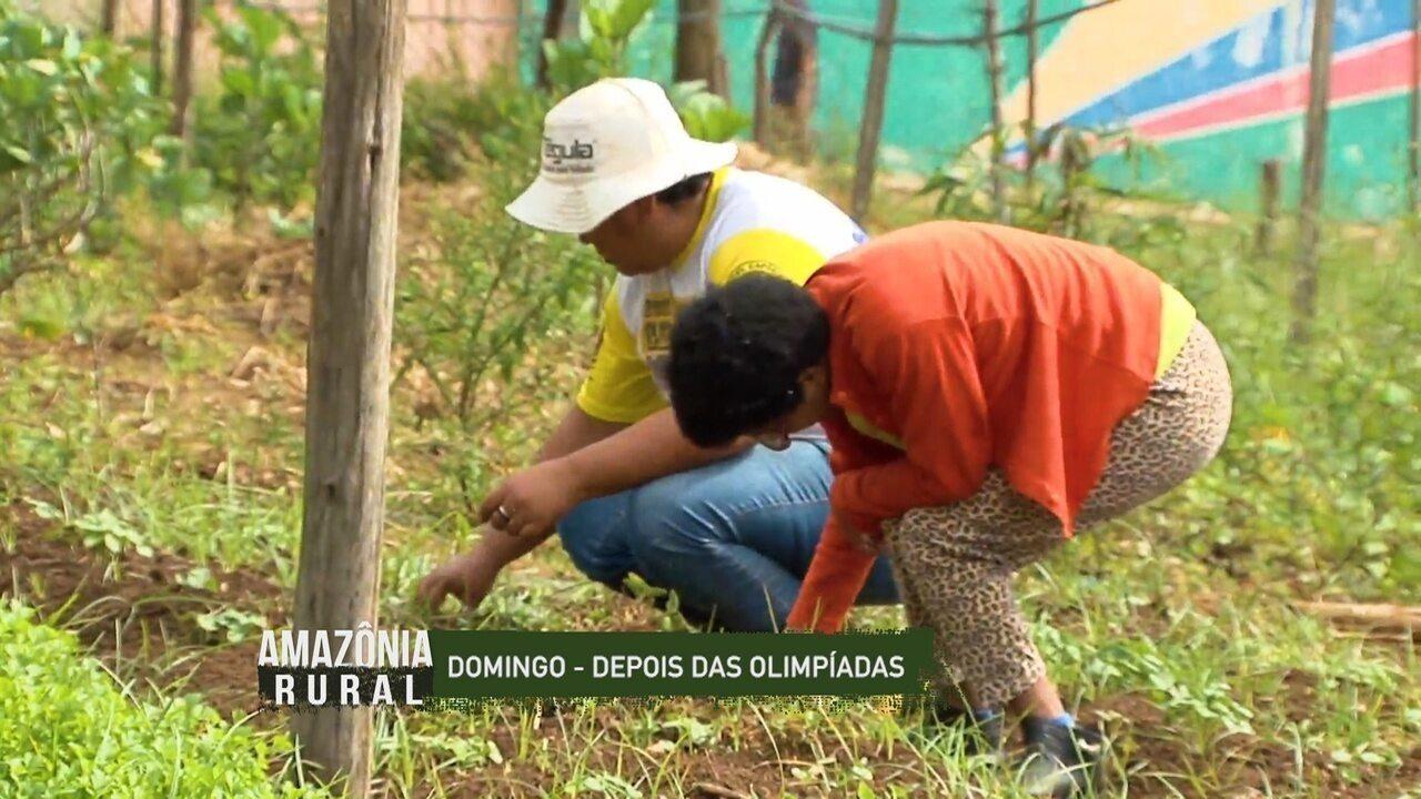 Veja o que é destaque no Amazônia Rural deste domingo (18)