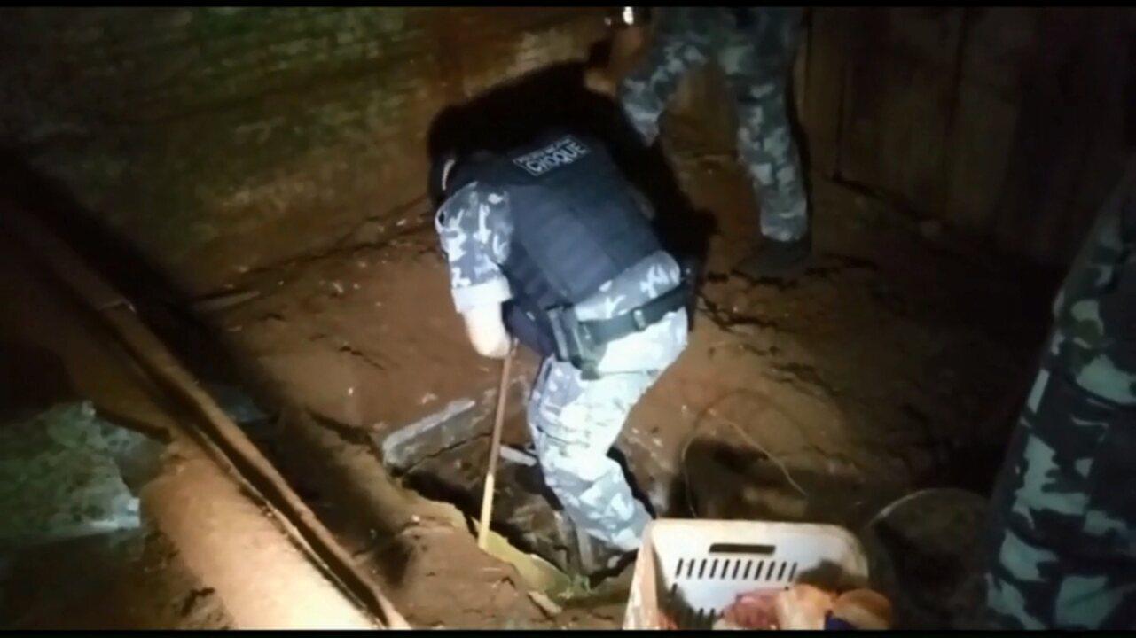 PM encontra quase R$ 600 mil enterrados na casa de homem preso por tráfico