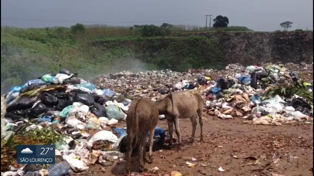 Estudo do TCE revela que 114 cidades de PE não tratam lixo corretamente