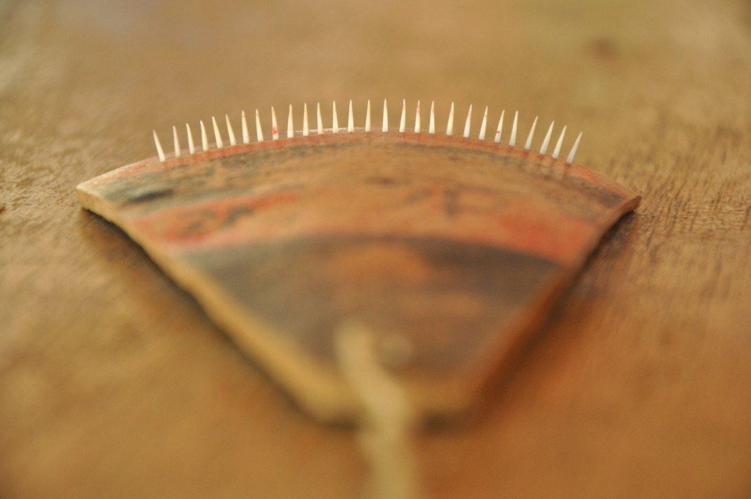 Arranhadeira é feita com os dentes afiados do peixe cachorra-do-rabo-amarelo