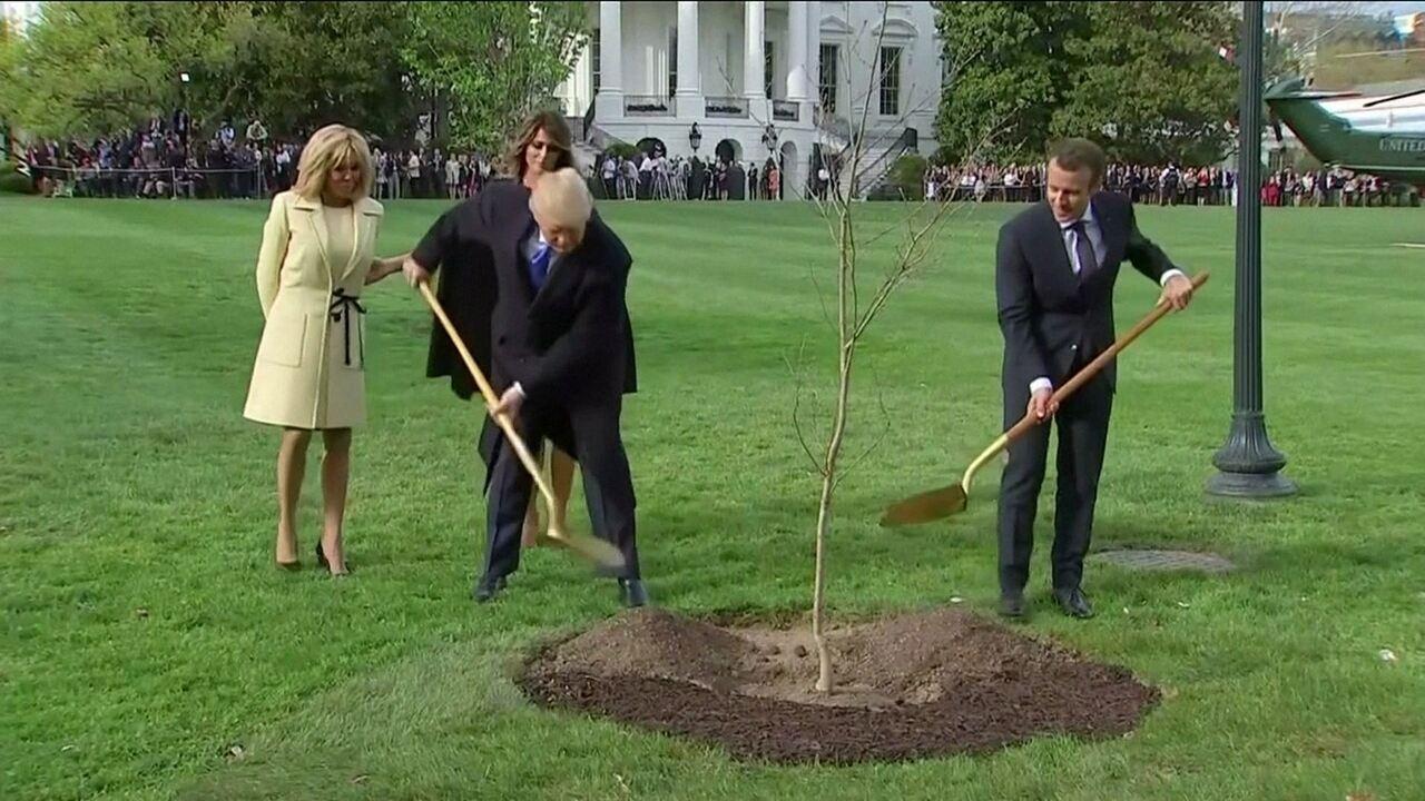 Árvore plantada por Trump e Macron está em quarentena