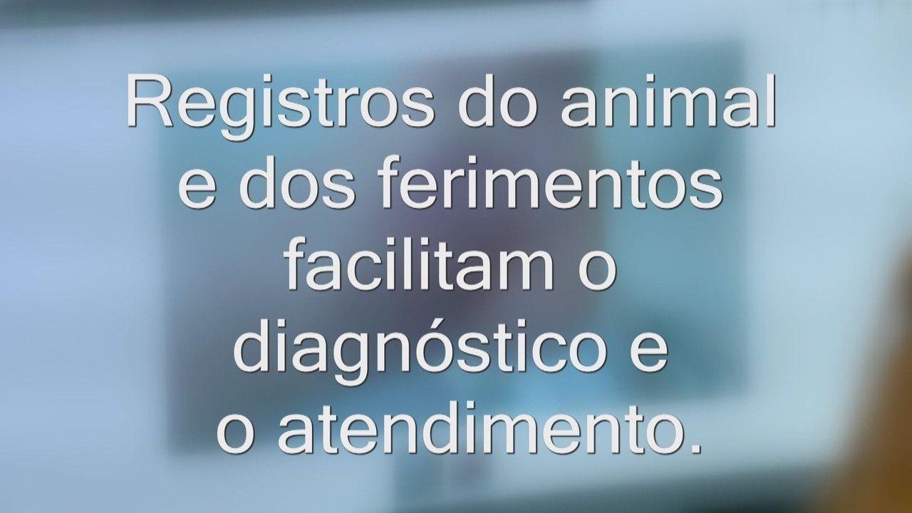 Os registros dos animais agilizam o diagnóstico e facilitam a orientação médica