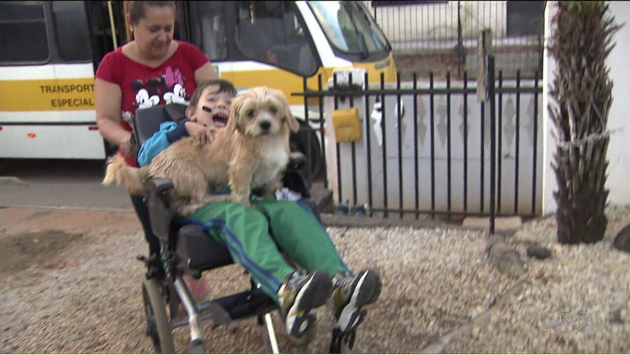 Resultado de imagem para Conheça a história do menino Henrique e seu cãozinho, o Pipo