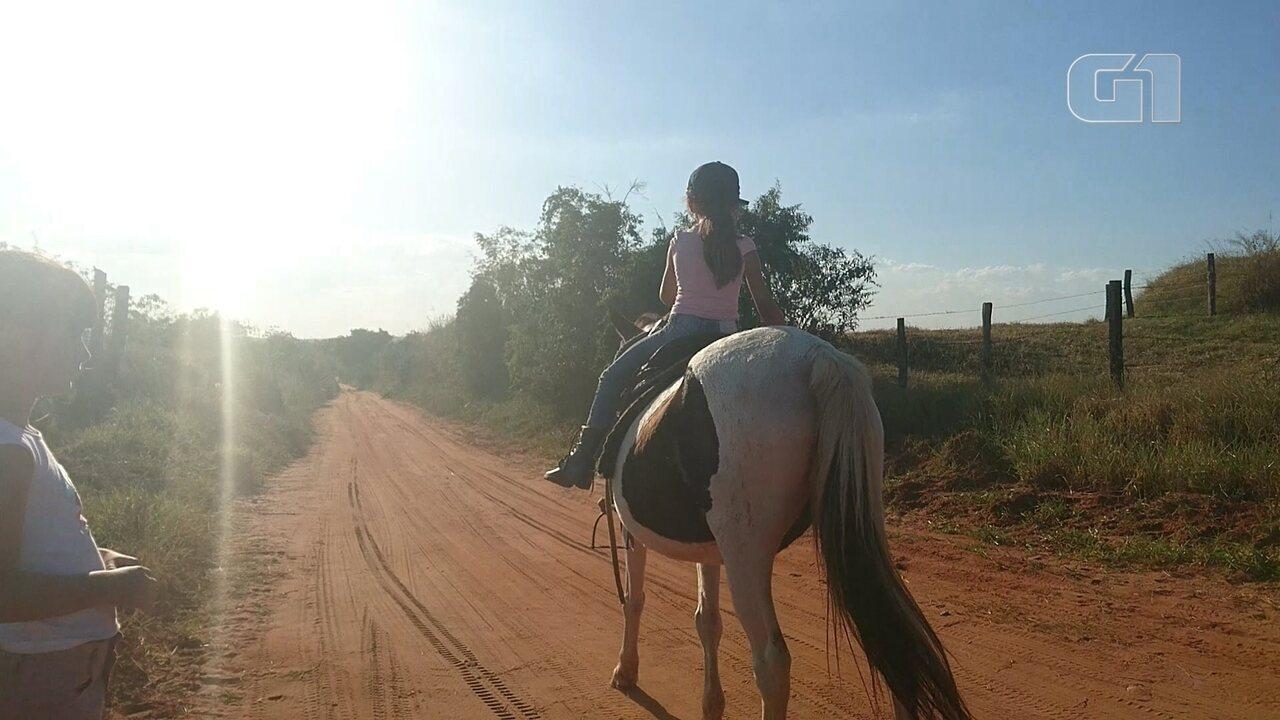 Menina de 6 anos chama atenção ao montar cavalo e tocar o gado