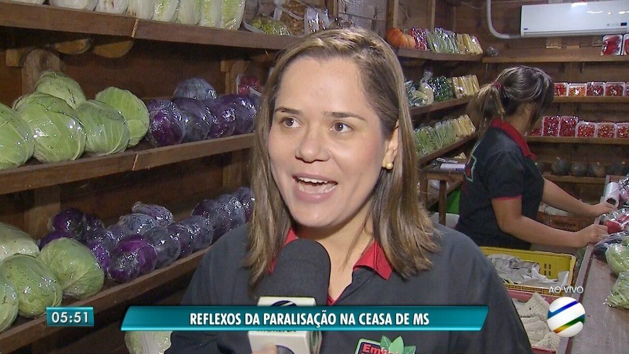 Saca da batata chega a R$ 350 em Campo Grande, MS