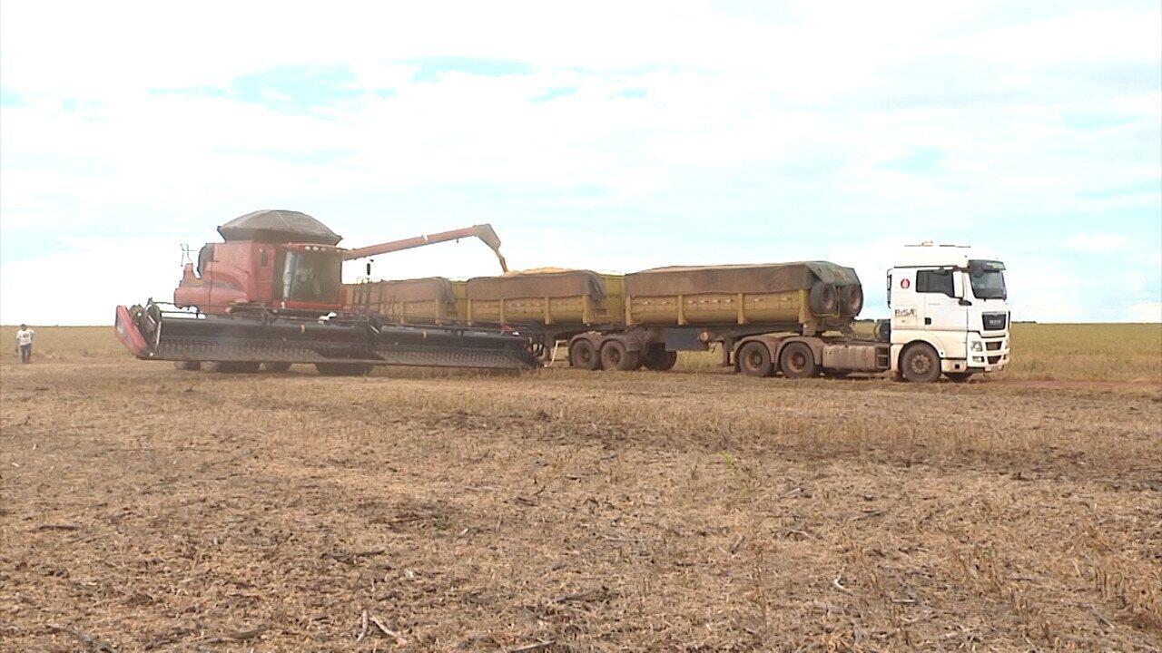 Mirante Rural mostra os reflexos da greve dos caminhoneiros no MA