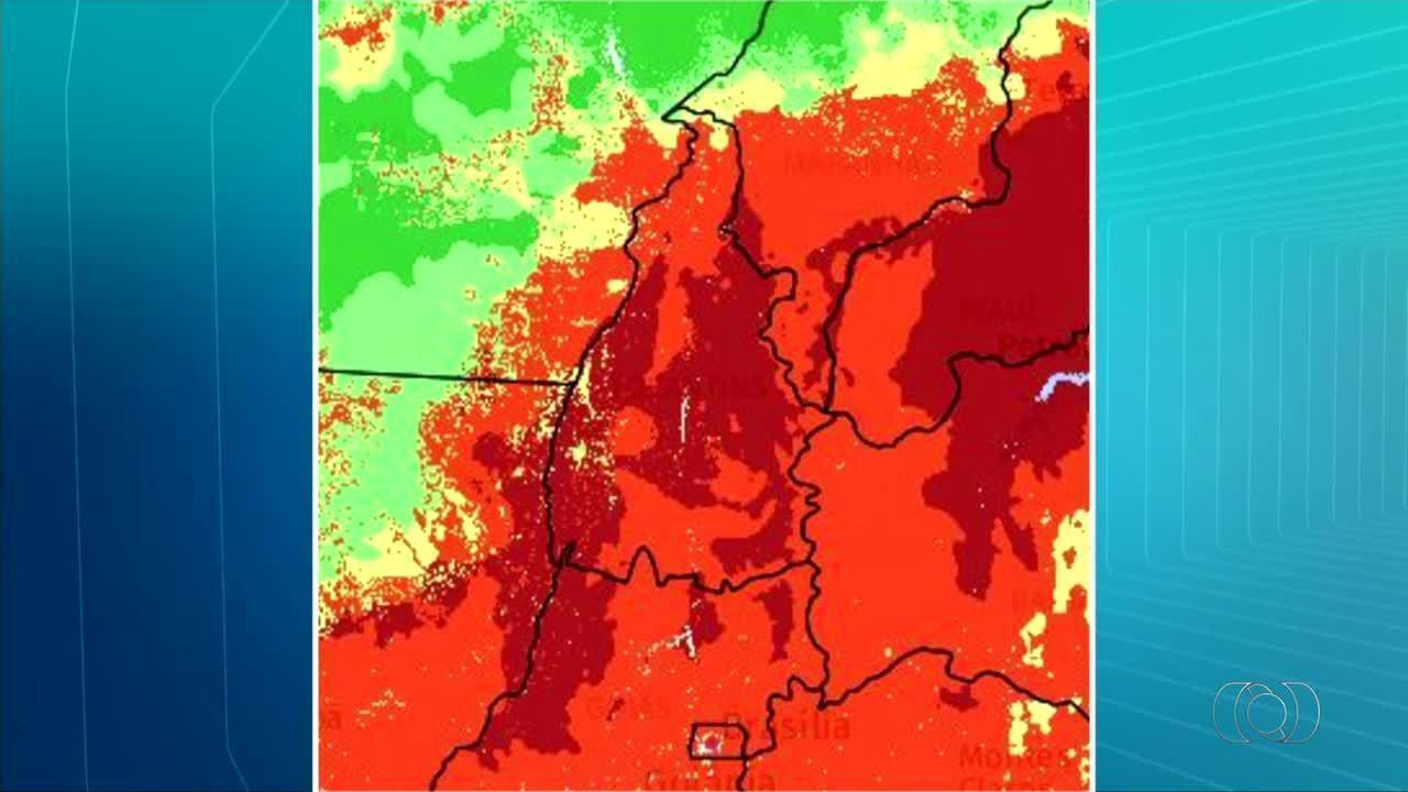 Governo decreta situação de risco de desastre ambiental por causa de incêndios