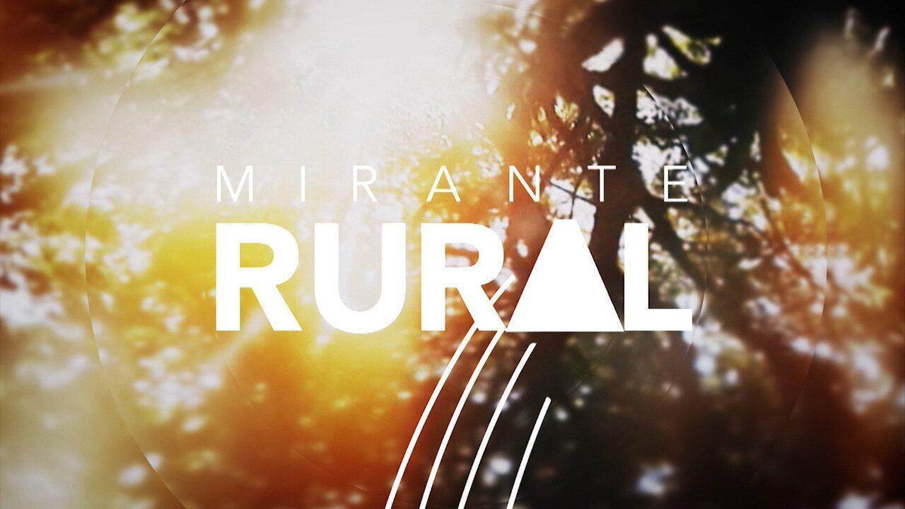 Veja os destaques do Mirante Rural deste domingo (17)