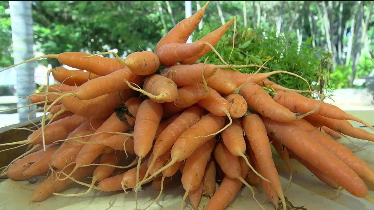 Consumo de orgânicos vem crescendo nos grandes centros