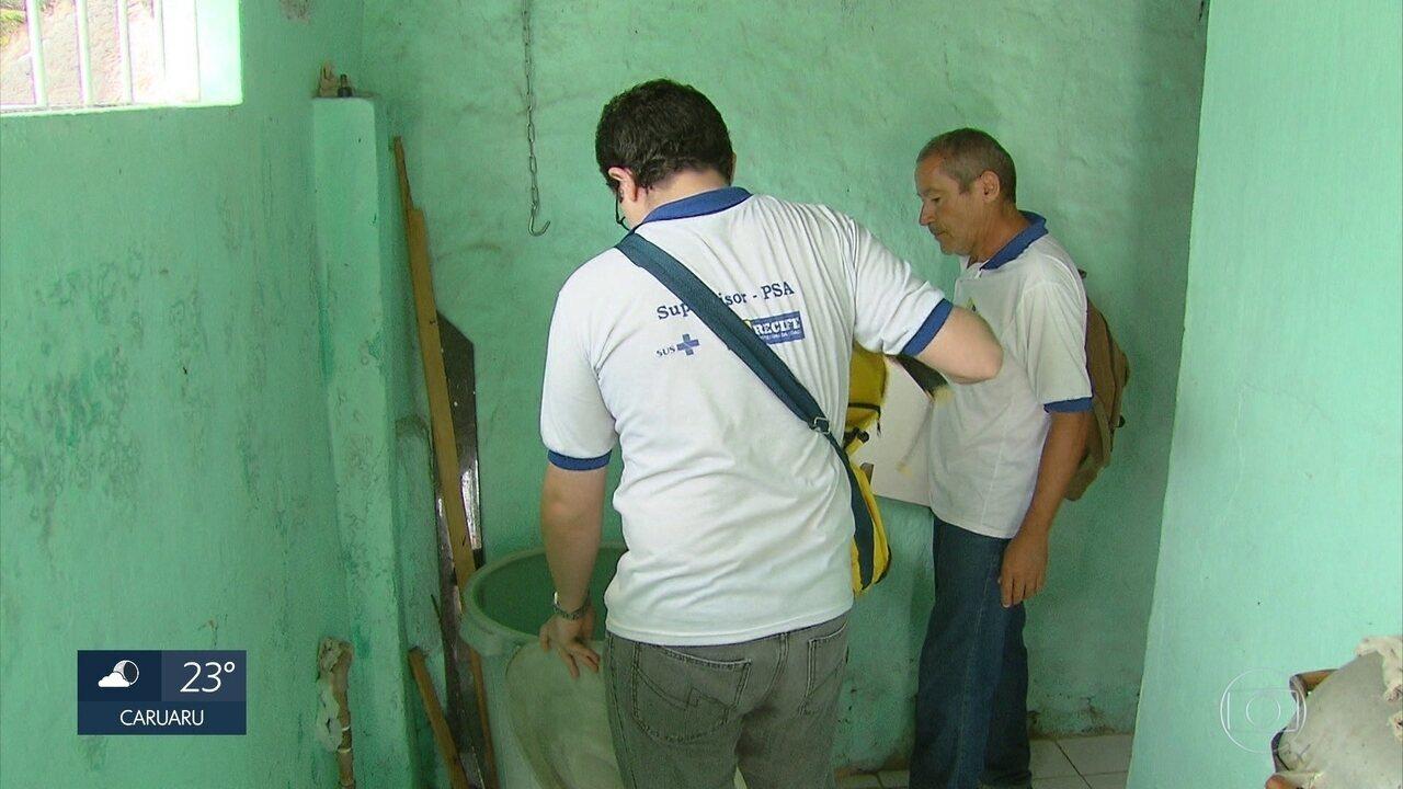 Onze bairros do Recife têm alto risco de infestação por Aedes aegypti, diz relatório
