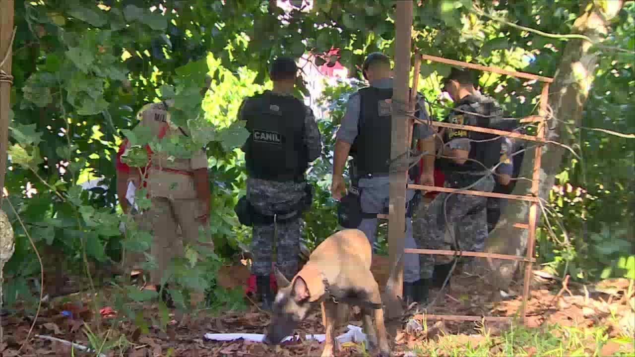Corpo é encontrado enterrado em área de mata em Manaus