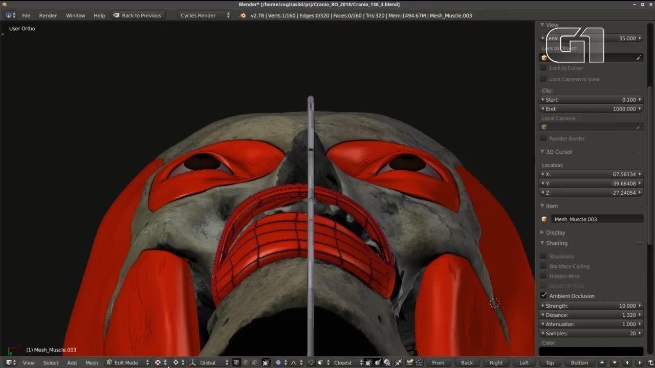 Veja a reconstrução facial em 3D de indígena feito com base em crânio achado em RO