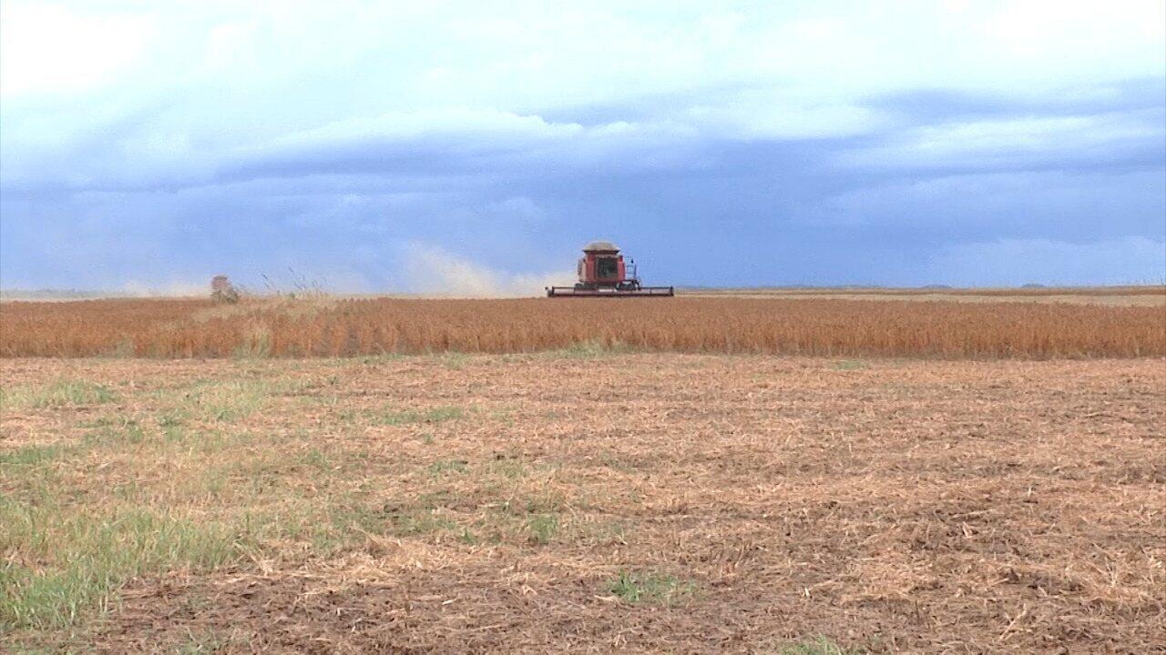 Agricultores recebem ações sobre uso correto dos agrotóxicos