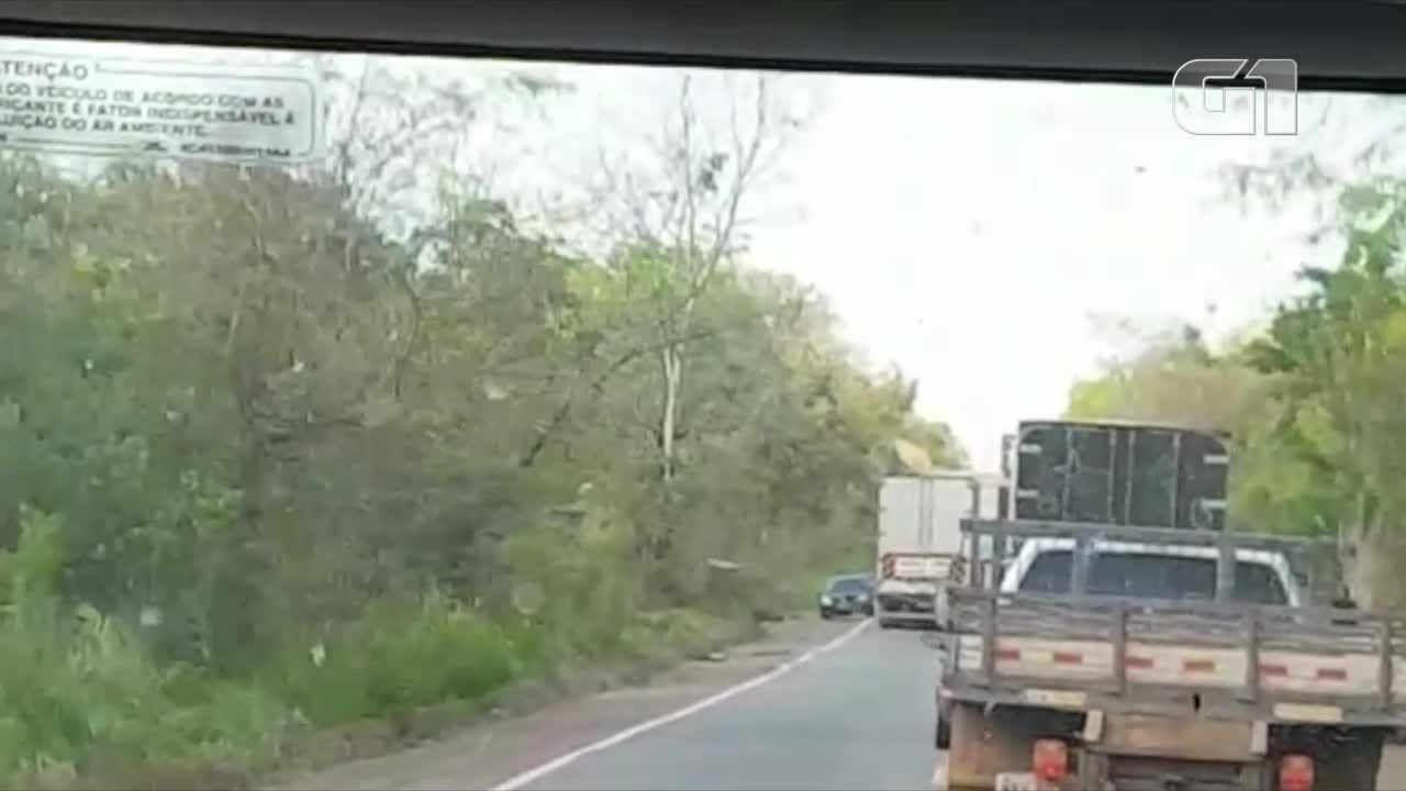Motorista é obrigado a passar por acostamento para evitar colisão frontal em rodovia