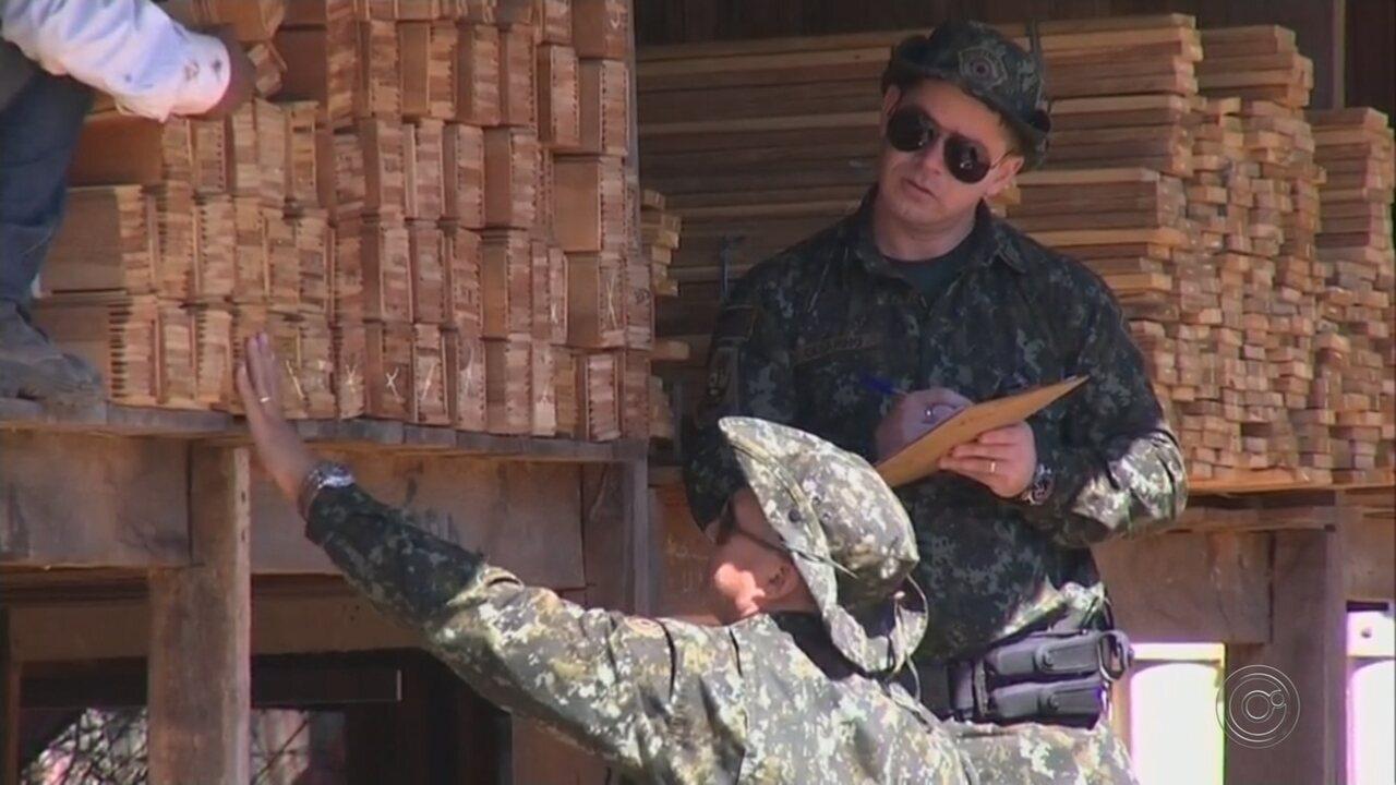Polícia Ambiental faz operação em madeireiras da região de Jundiaí