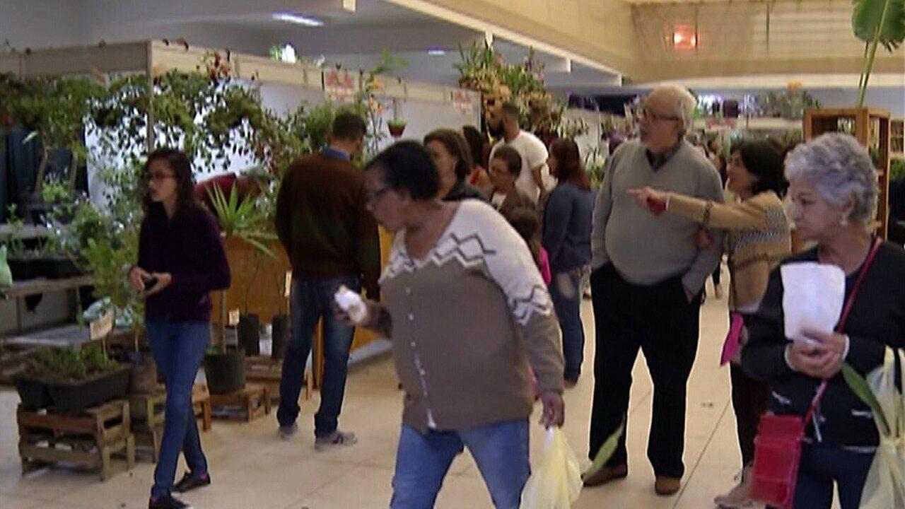 Expoá recebe visitantes da região no feriado prolongado