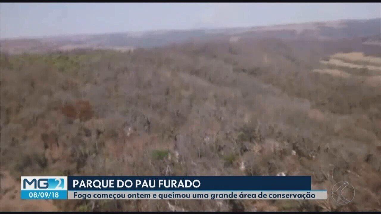 Título Incêndio no Parque Estadual do Pau Furado em Uberlândia é controlado