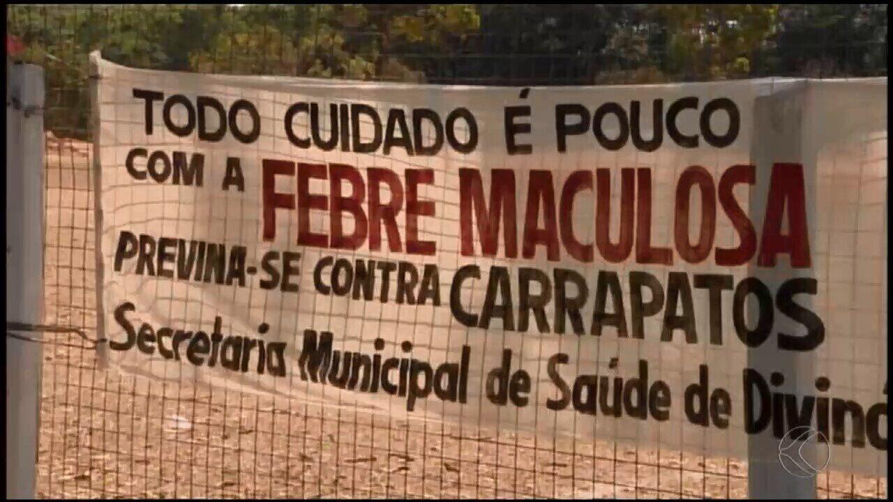 Dois novos casos de febre maculosa são investigados em Divinópolis